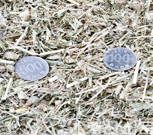 TMR 사료위에 500원짜리 동전을 올려놓고 동전보다 큰 입자가 없도록 하는 게 골라먹지 못하고 결과적으로 과산증을 피할 수 있다.
